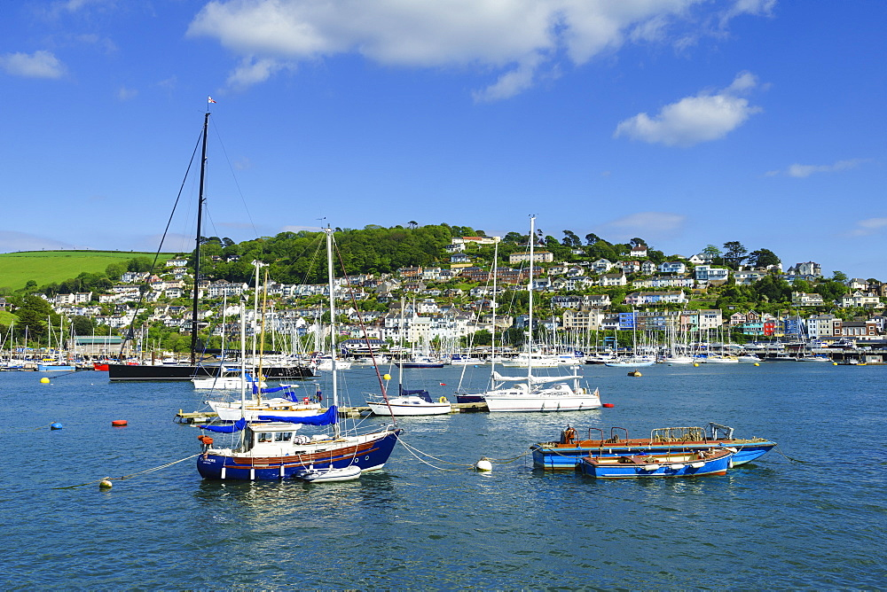 Kingswear and River Dart viewed from Dartmouth, Devon, England, United Kingdom, Europe - 808-1517