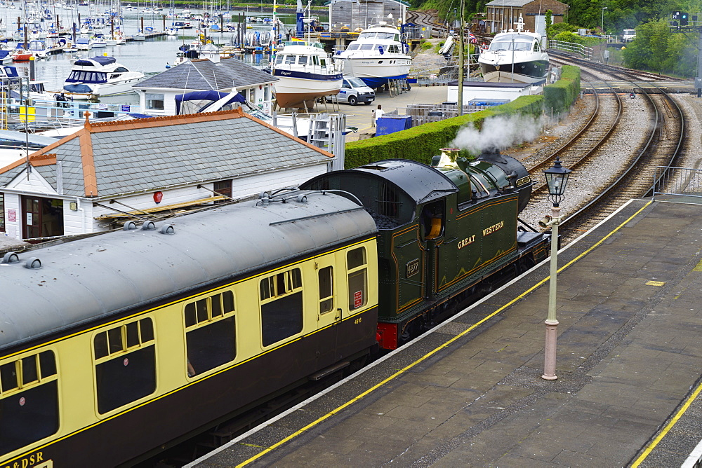 Steam train, Kingswear, Devon, England, United Kingdom, Europe - 808-1528