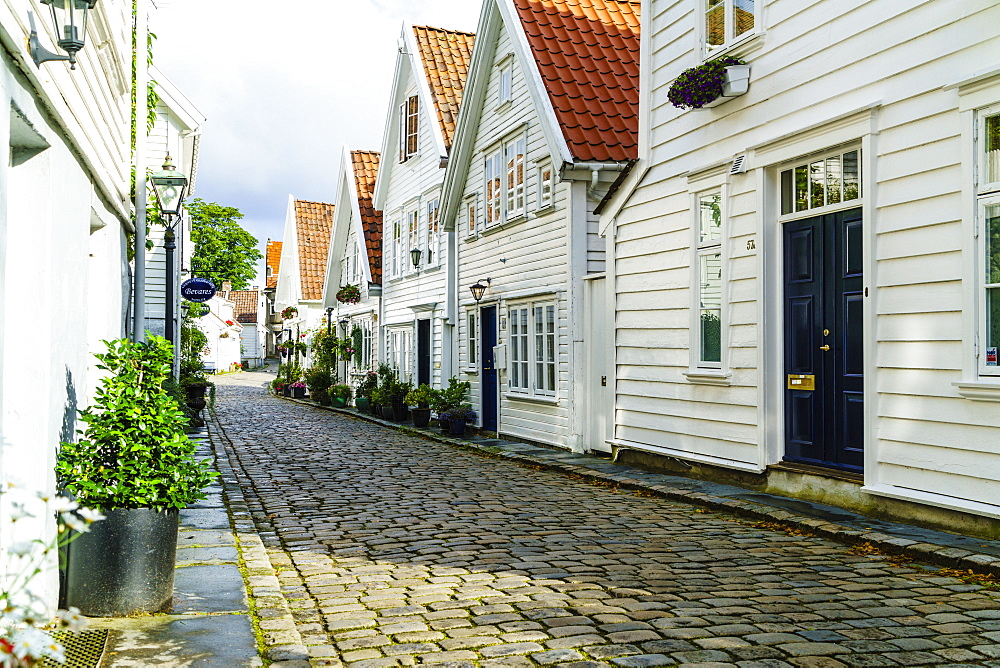 Old Stavanger (Gamle Stavanger) comprising about 250 buildings dating from early 18th century, mostly small white cottages, Stavanger, Rotaland, Norway, Scandinavia, Europe - 808-1577