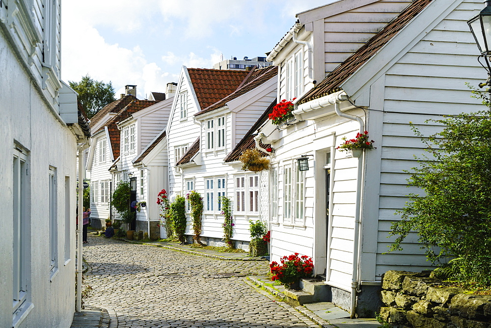 Old Stavanger (Gamle Stavanger) comprising about 250 buildings dating from early 18th century, mostly small white cottages, Stavanger, Rotaland, Norway, Scandinavia, Europe - 808-1580