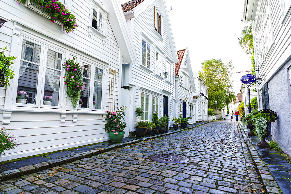 Old Stavanger (Gamle Stavanger), comprising about 250 buildings dating from early 18th century, mostly small white cottages, Stavanger, Rotaland, Norway, Scandinavia, Europe - 808-1606
