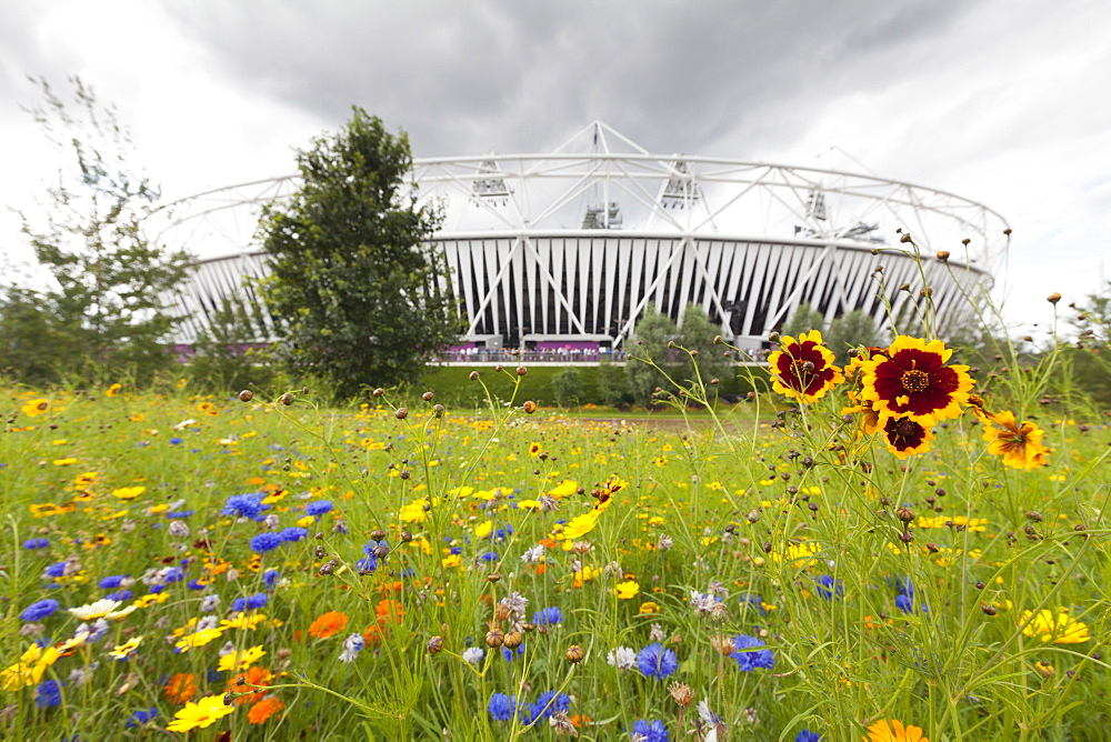 Olympic Stadium surrounded by wild flowers in the Olympic Park, Stratford City, London, England.