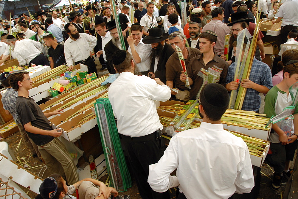 Jews buying Sukhot ritual items, Jerusalem, Israel, Middle East