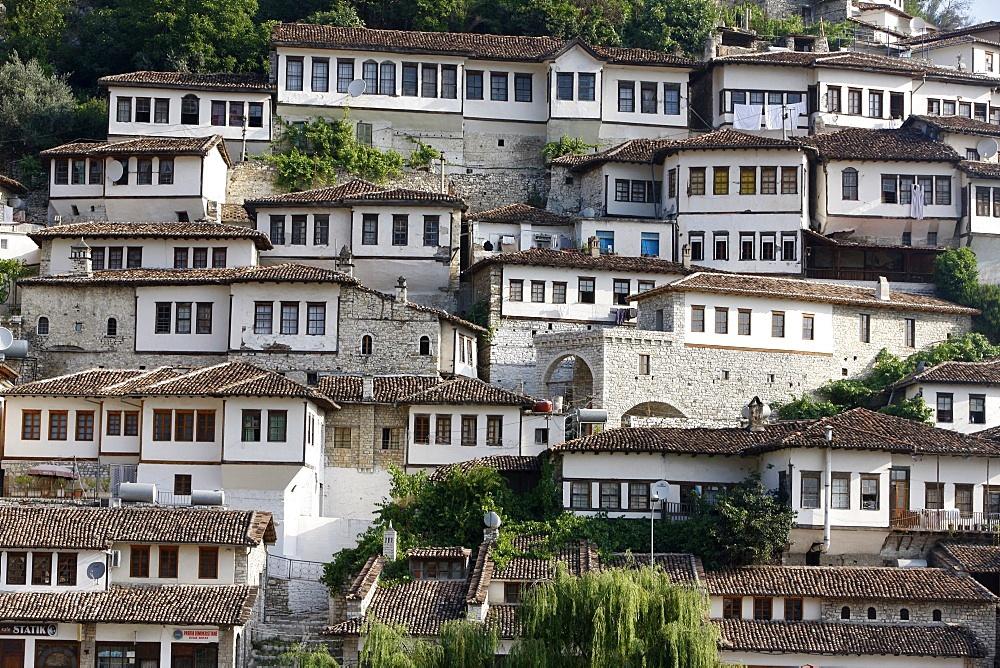 Riverfront buildings, Berat, Albania, Europe