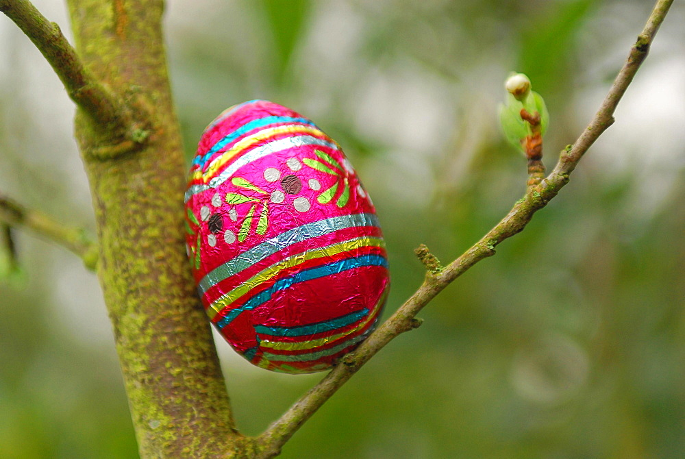 Easter egg search, Paris, France, Europe