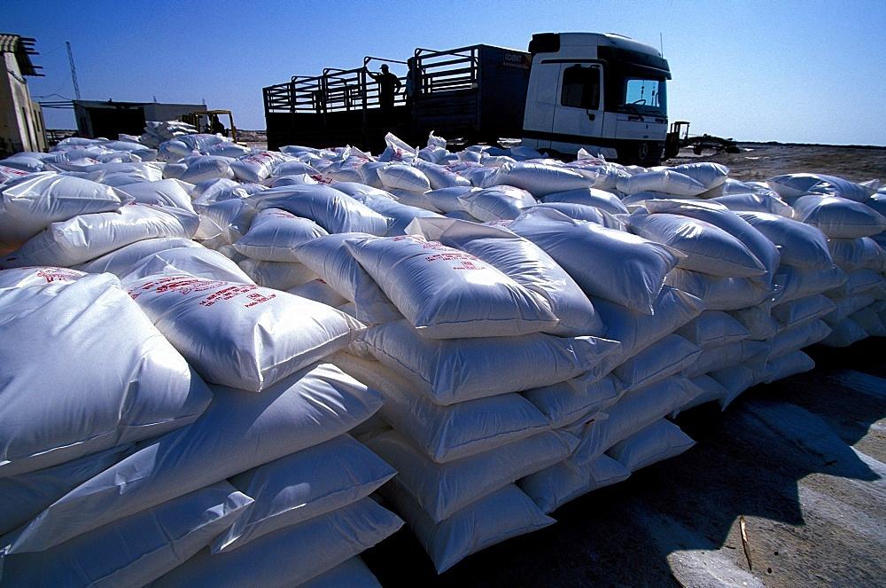 Chott el-Djerid salt bags, Tozeur, Tunisia, North Africa, Africa