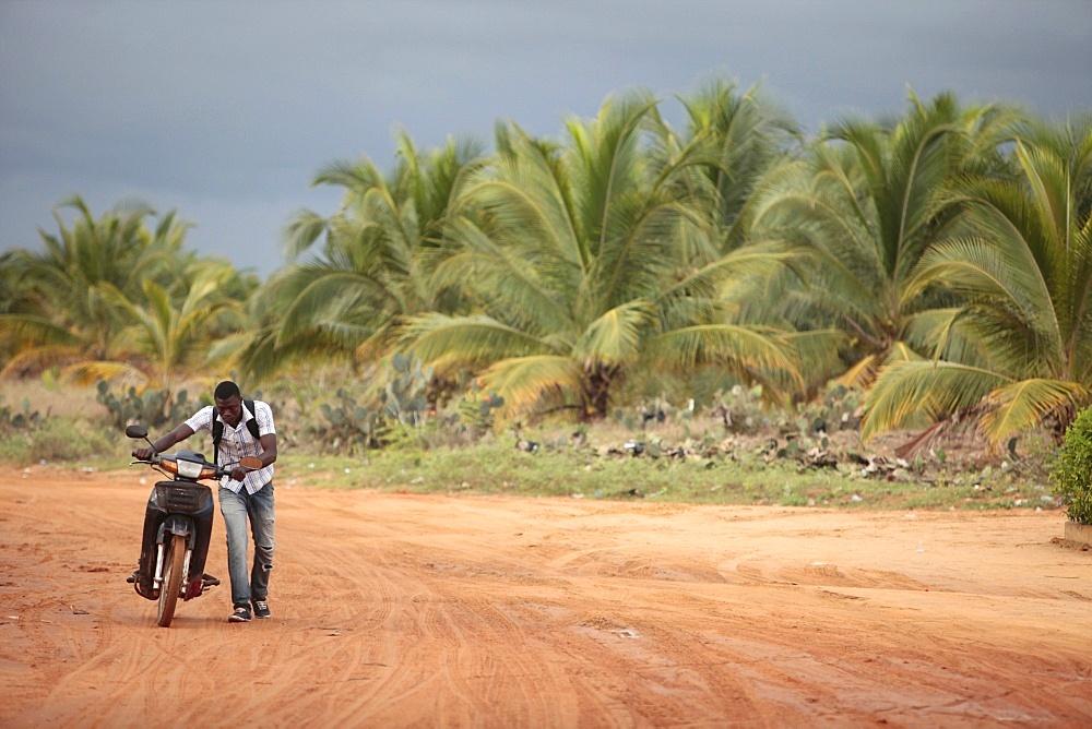 African road, Ouidah, Benin, West Africa, Africa