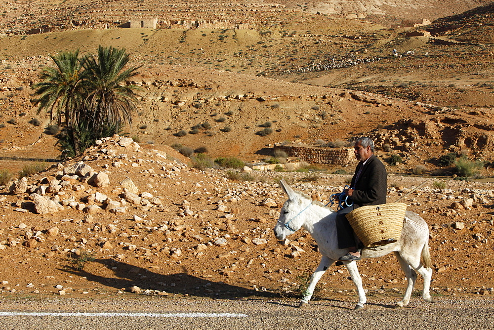 Man traveling on a donkey, Douirette, Tataouine, Tunisia, North Africa, Africa