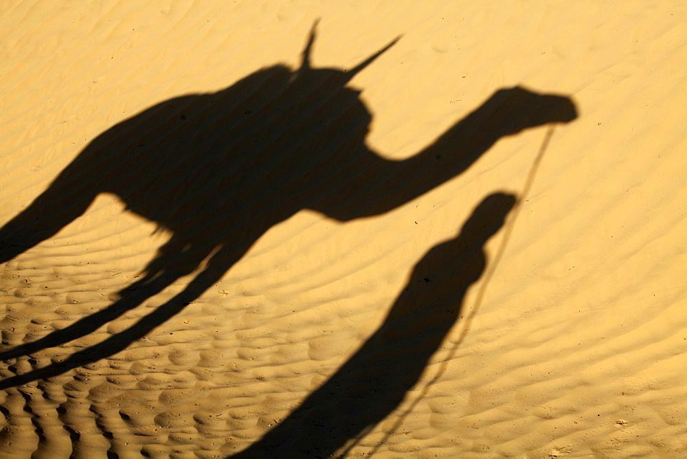 Camel driver's shadow in the Sahara desert, near Douz, Kebili, Tunisia, North Africa, Africa