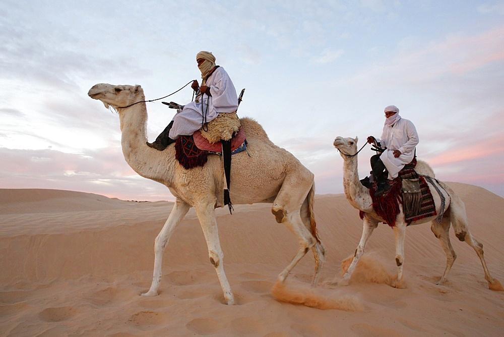 Dromedary riders in the Sahara, Douz, Kebili, Tunisia, North Africa, Africa