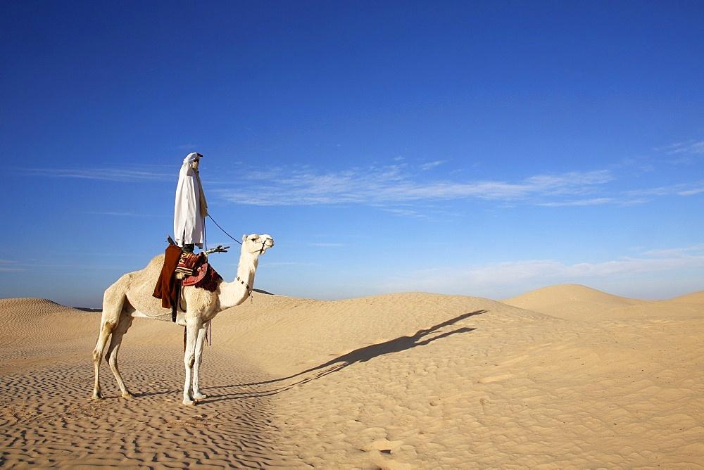 Dromedary rider in the Sahara, Douz, Kebili, Tunisia, North Africa, Africa