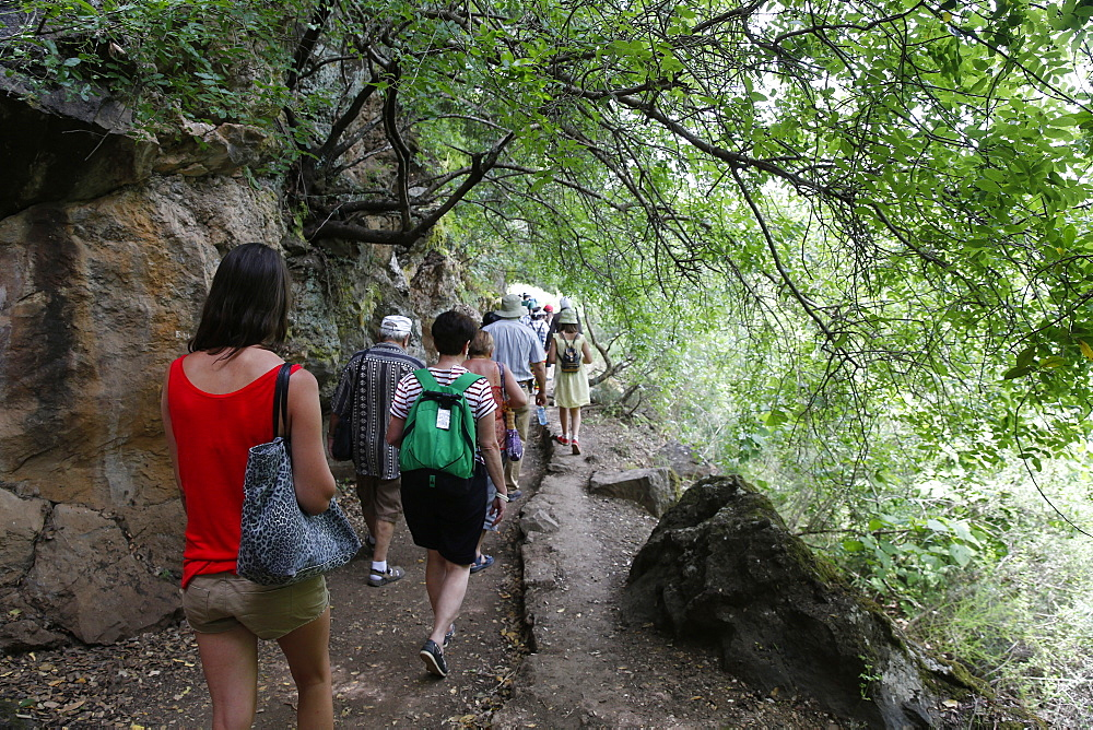 Pilgrims in the Holy Land walking in the Golan Heights, Galilee, Israel, Middle East
