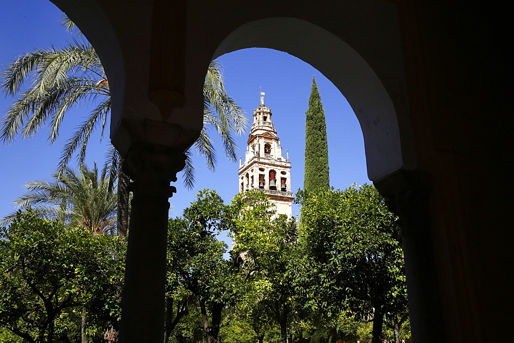 Abd er-Rahman III Minaret, tower of the Mosque (Mezquita) and Cathedral of Cordoba, and Patio de los Naranjas, Cordoba, Andalucia, Spain, Europe