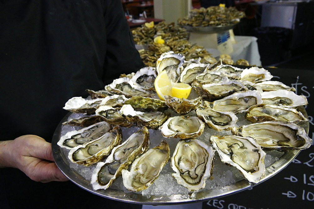 Oysters, Megeve, Haute-Savoie, France, Europe
