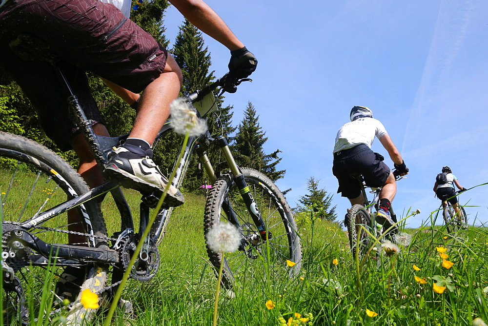 Dre Dans le l'Darbon, mountain bike race in the French Alps, Haute Savoie, France, Europe