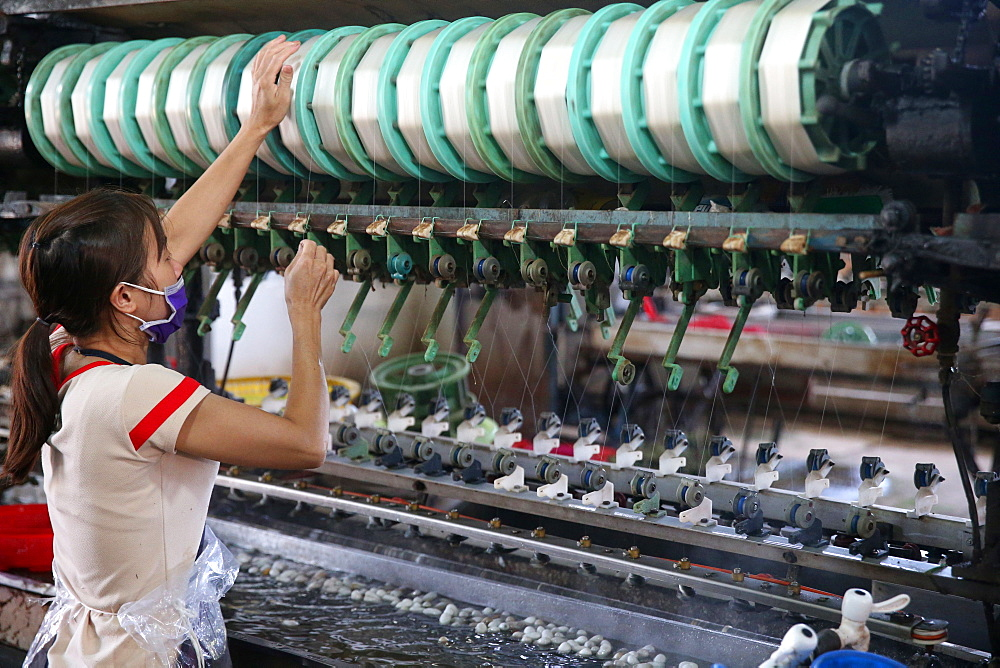 Woman working on silk spinning machine in traditional silk factory, Dalat, Vietnam, Indochina, Southeast Asia, Asia - 809-7301