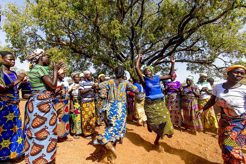 Members of a women's microfinance cooperative welcoming a visitor with dances in Northern Togo, West Africa, Africa