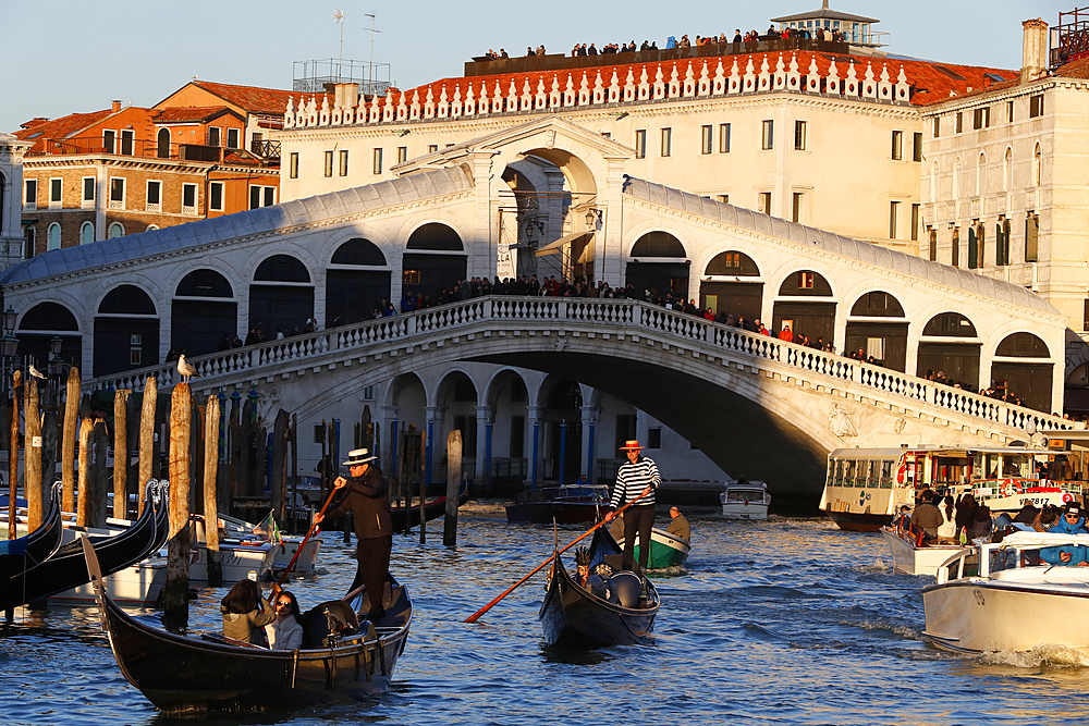 Rialto Bridge and Grand Canal with gondolier sailing on gondola, Venice, UNESCO World Heritage Site, Veneto, Italy, Europe