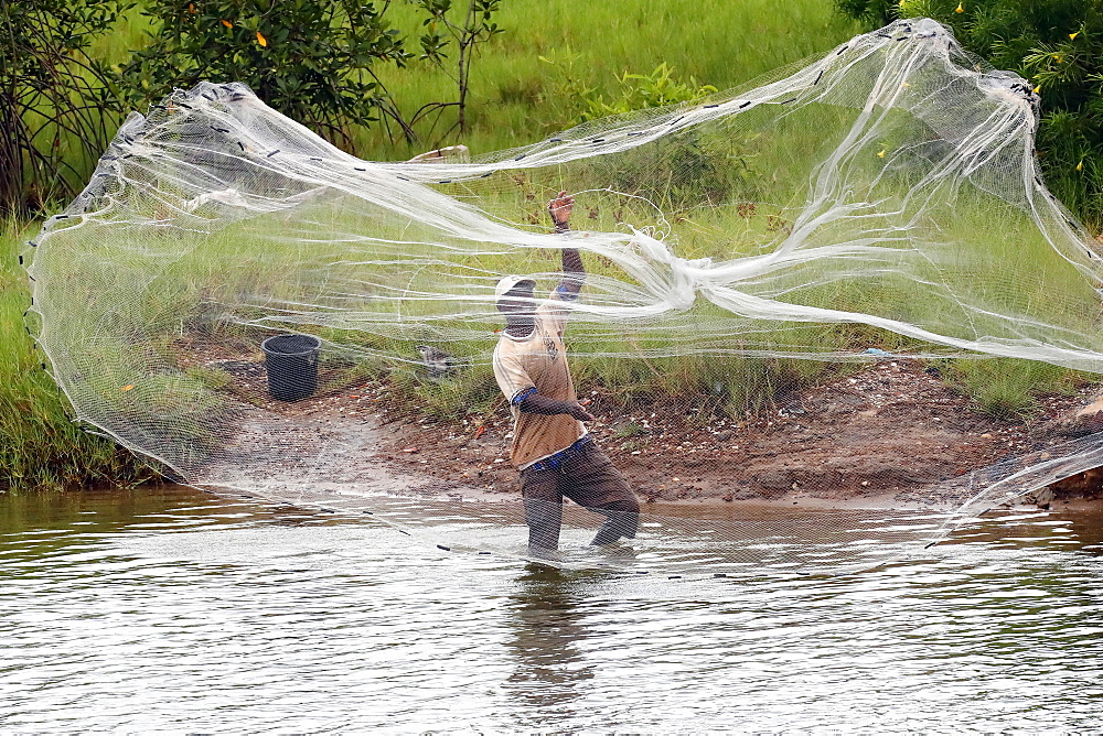 African fisherman throwing net into the river in traditional way, Aneho, Togo, West Africa, Africa