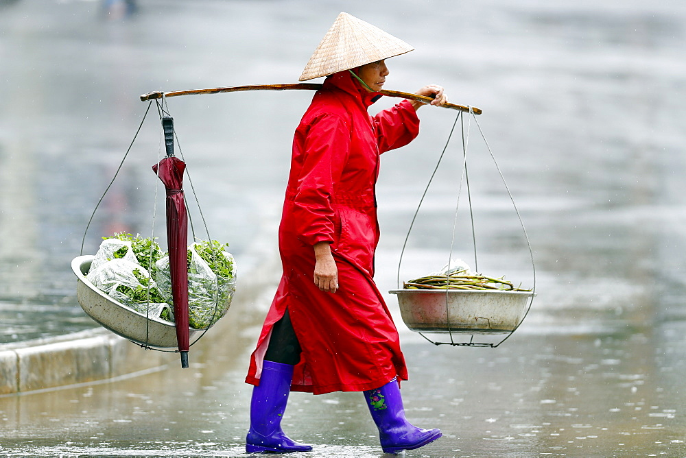 Monsoon (rainy) season, Sapa, Vietnam, Indochina, Southeast Asia, Asia - 809-7877
