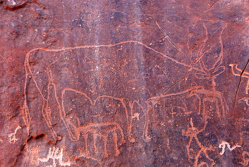 Rock paintings at Inchalt, Ghat, Akakus, Libya, North Africa, Africa