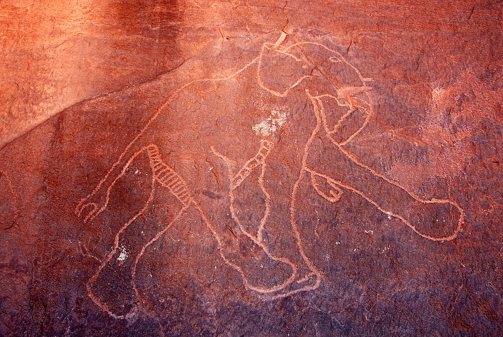 Rock paintings in Ghat, Akakus, Libya, North Africa, Africa