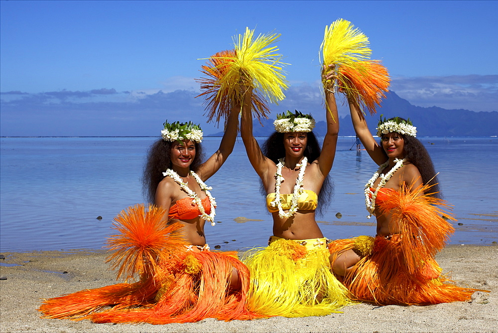 Some vahines from the Tahiti ora troupe, French Polynesia, Pacific Islands, Pacific - 814-1505