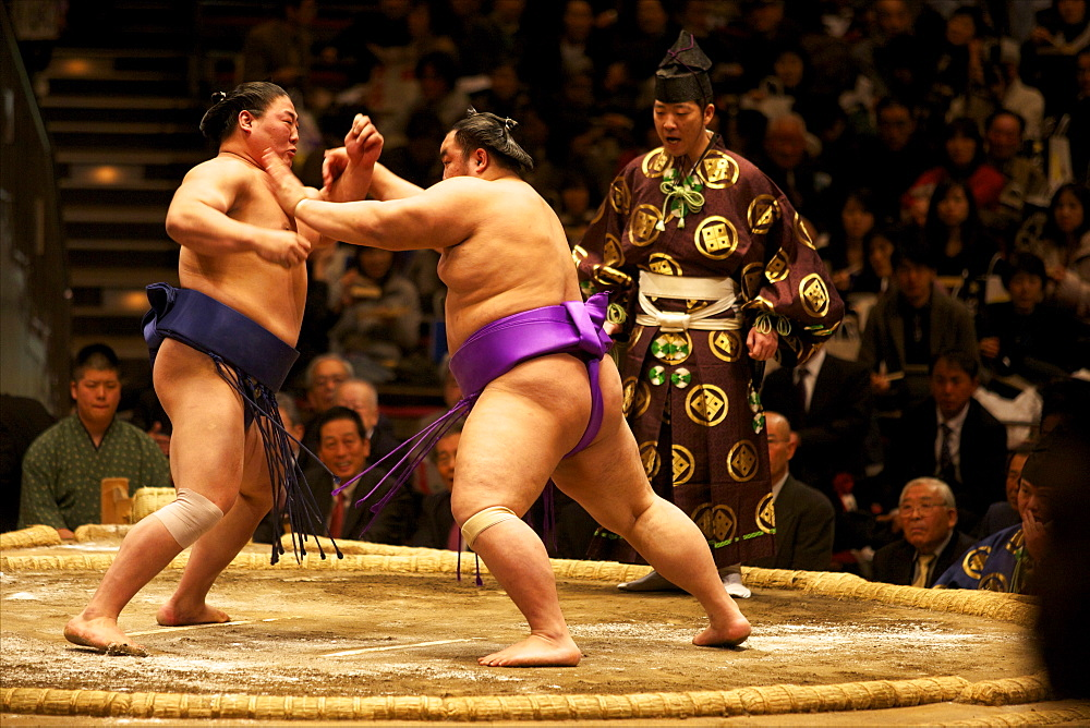 Sumo wrestling competition at the Kokugikan stadium, Tokyo, Japan, Asia