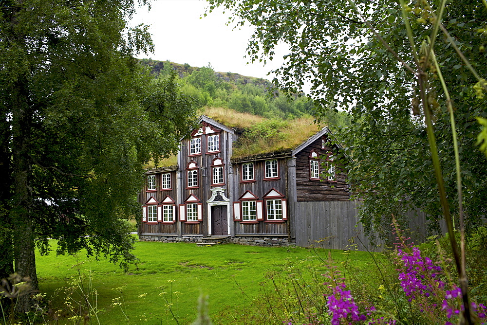 Wooden houses, Trondheim, Norway, Arctic, Scandinavia, Europe - 814-1553