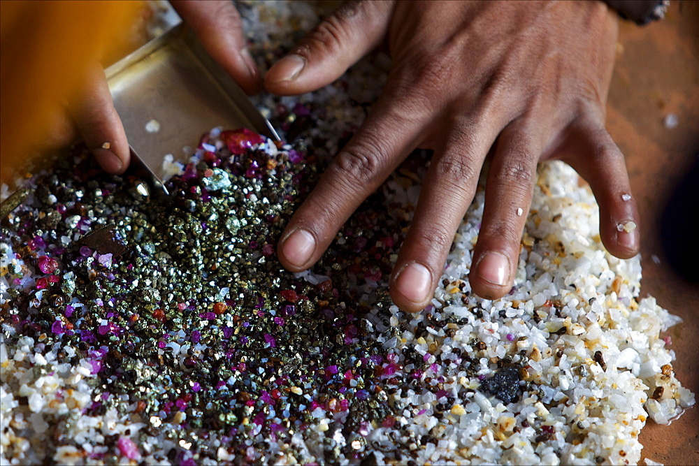 After bashing the sand, the ruby stones concentrate naturally in the middle of the container, Mogok, Myanmar (Burma), Asia - 814-1573