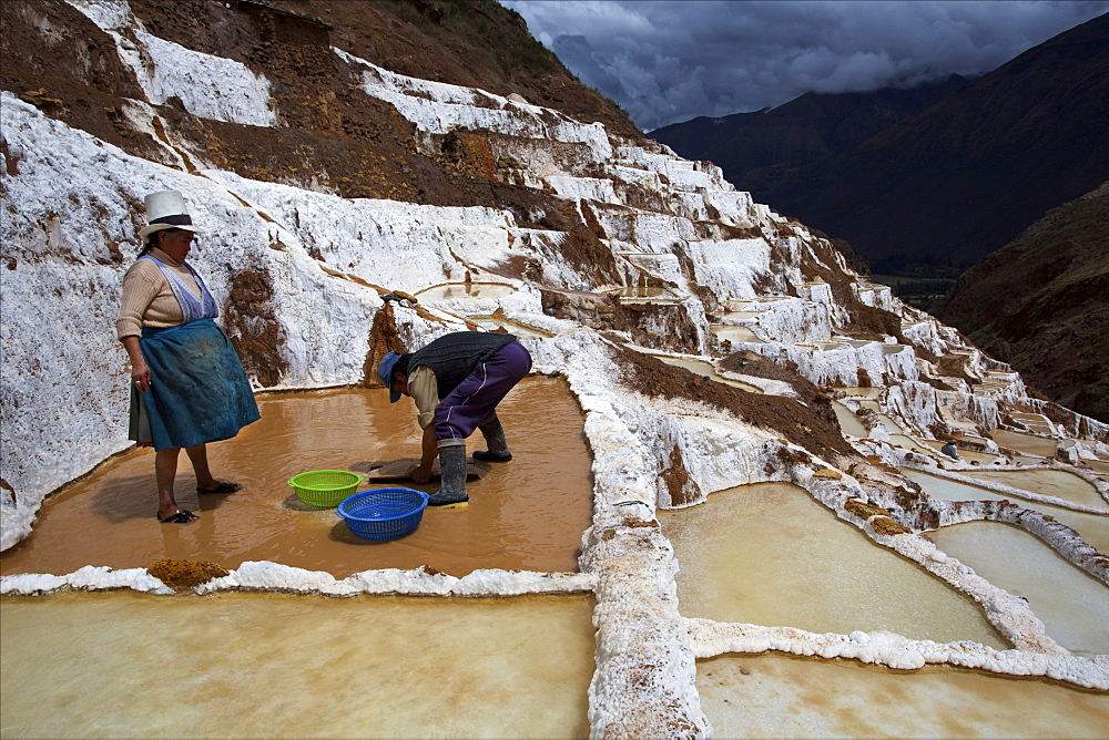 Family working in the Salinas de Maras, Sacred Valley, Peru, South America - 814-1591