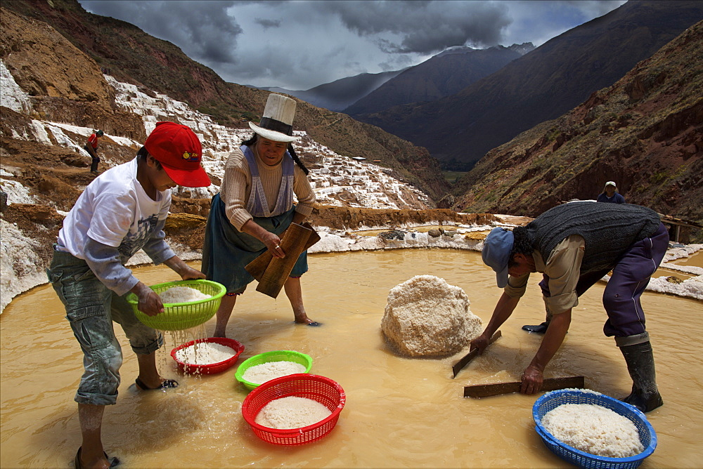 Family working in the Salinas de Maras, Sacred Valley, Peru, South America - 814-1597