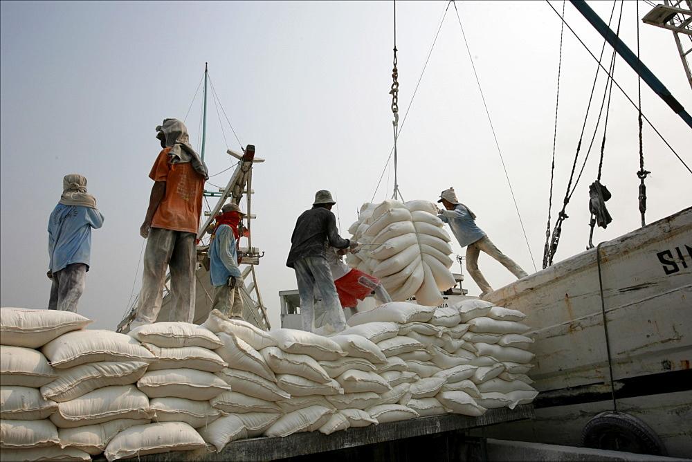 Unloading quicklime, Sunda Kelapa, harbour of Jakarta, Java, Indonesia, Southeast Asia, Asia