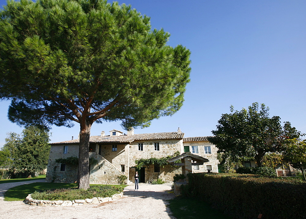 The agriturismo Pian del Tevere, close to Torgiano, Umbria, Italy, Europe