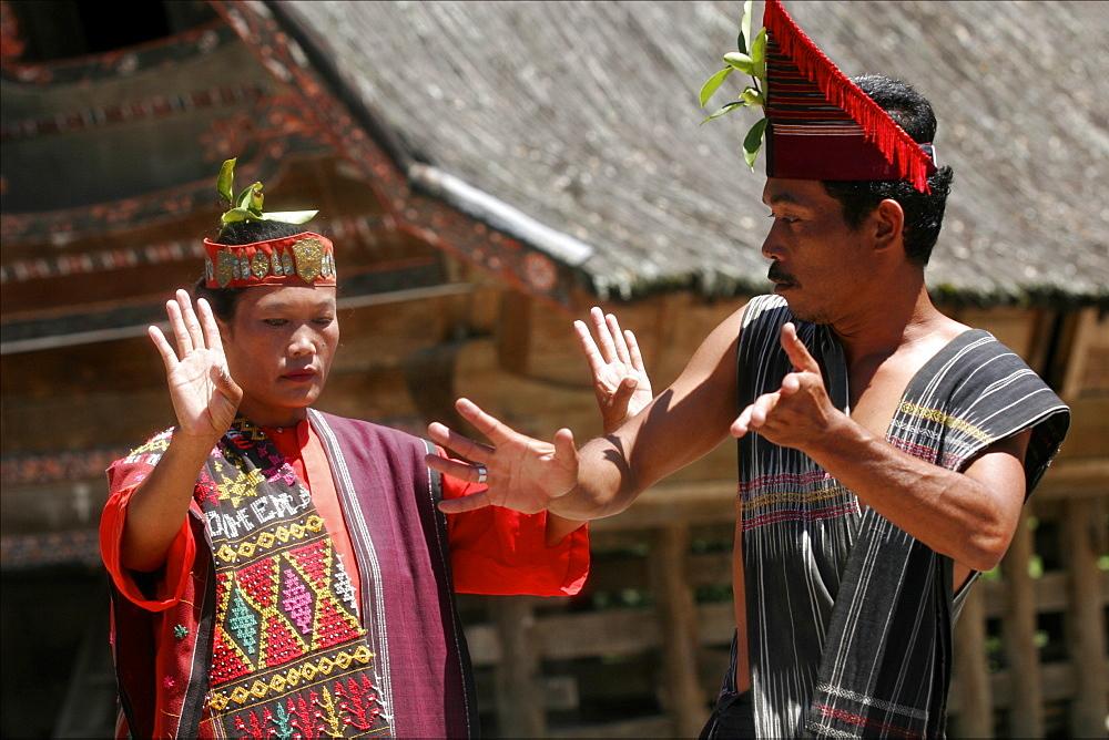 Woman and man dancing at a Batak show in Samosir, Lake Toba, Sumatra, Indonesia, Southeast Asia, Asia