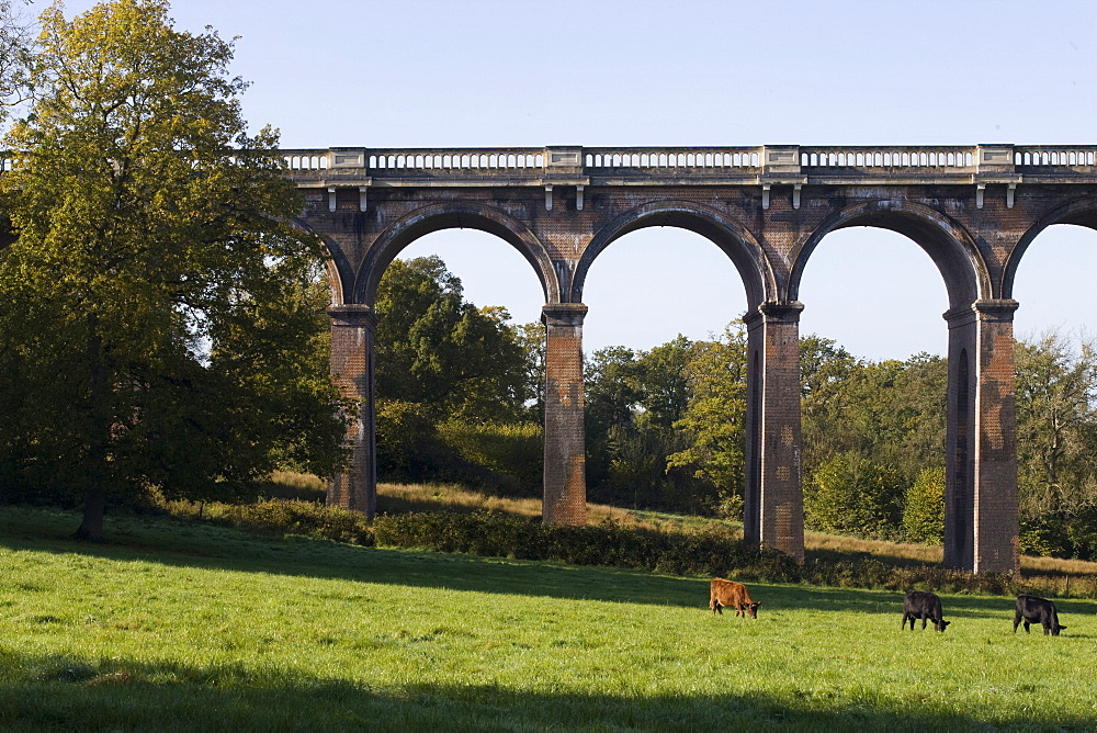 Balcombe Viaduct, Sussex, England, United Kingdom, Europe - 815-2145