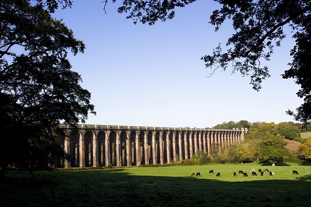 Balcombe Viaduct, Sussex, England, United Kingdom, Europe - 815-2146