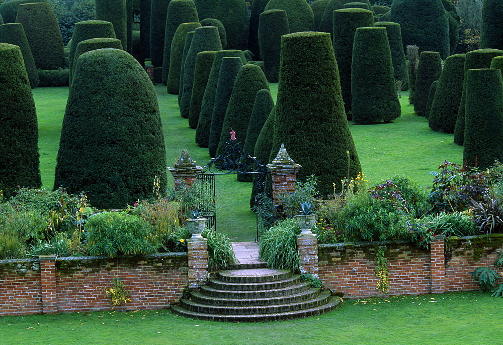 Topiary garden, Packwood House, Warwickshire, England, United Kingdom, Europe