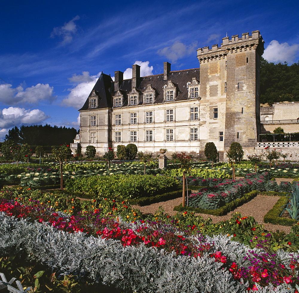 The Great Ornamental Potager at the Chateau de Villandry, UNESCO World Heritage Site, Pays de la Loire, France, Europe