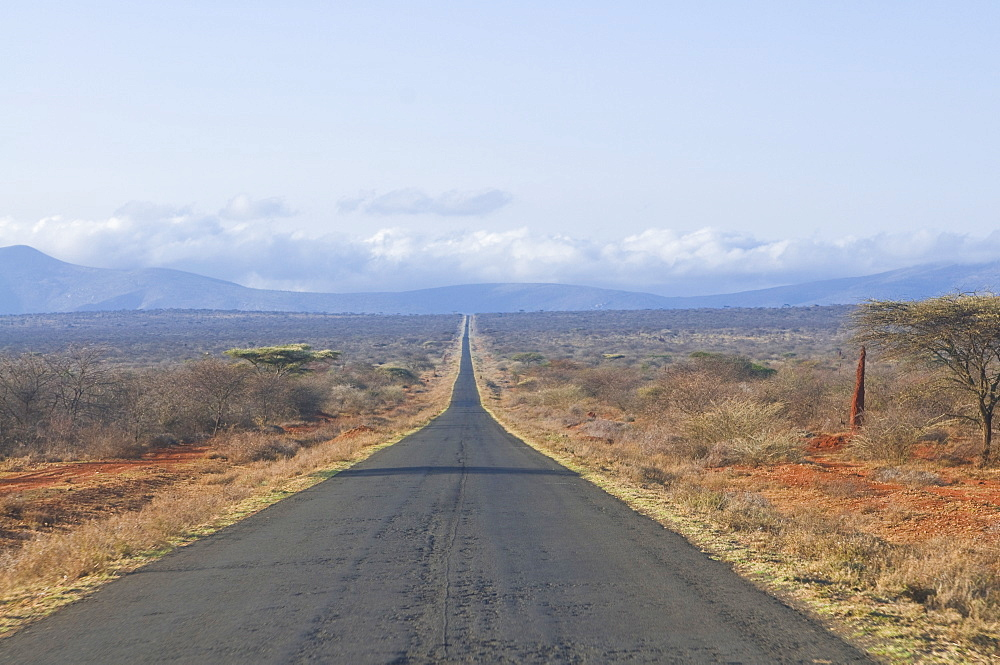 Straight road leading into Kenya in Southern Ethiopia, Africa