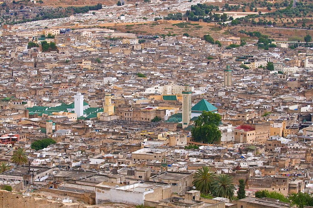 View over of the old Medina of Fez, UNESCO World Heritage Site, Morocco, North Africa, Africa
