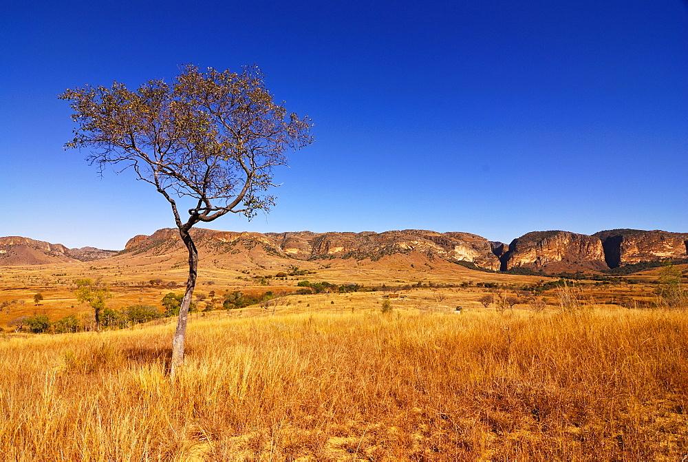 Isalo National Park, Madagascar, Africa