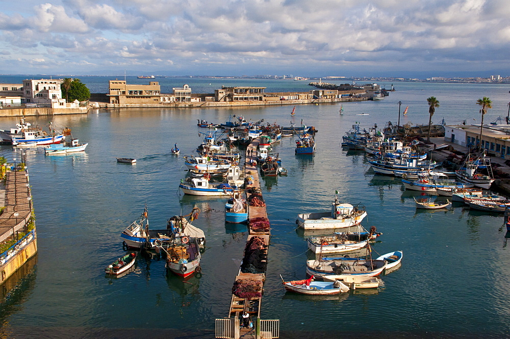 The harbour of Algiers, Algeria, North Africa, Africa