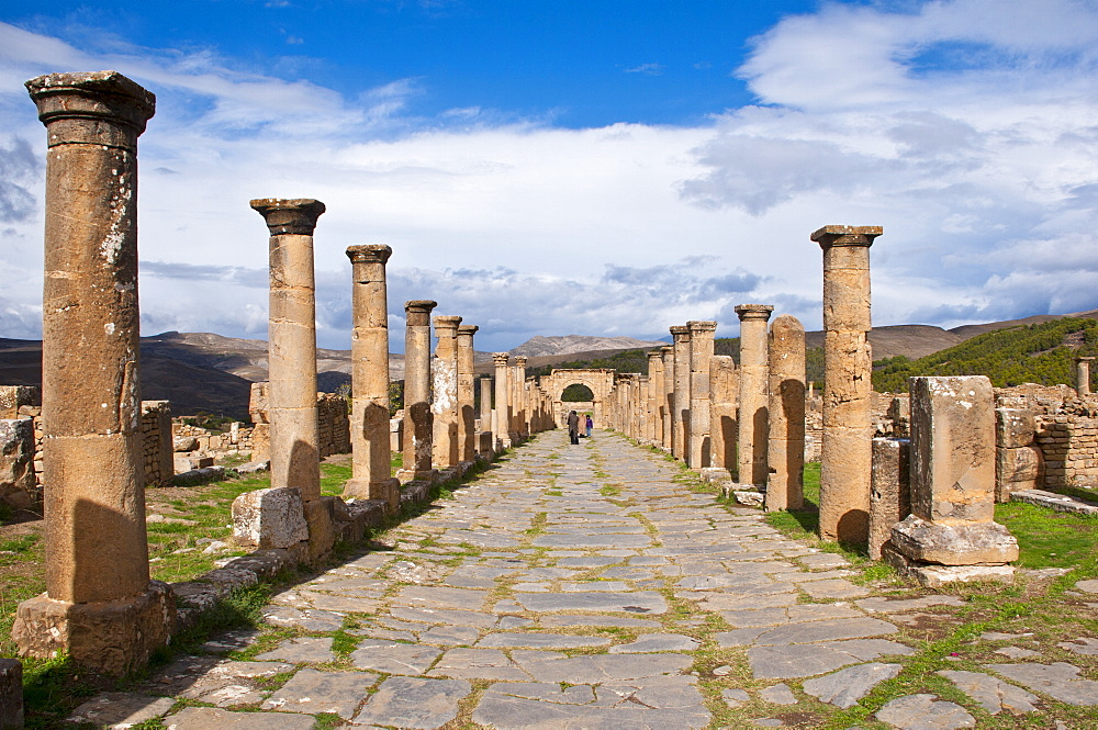 The Roman ruins of Djemila, UNESCO World Heritage Site, Algeria, North Africa, Africa