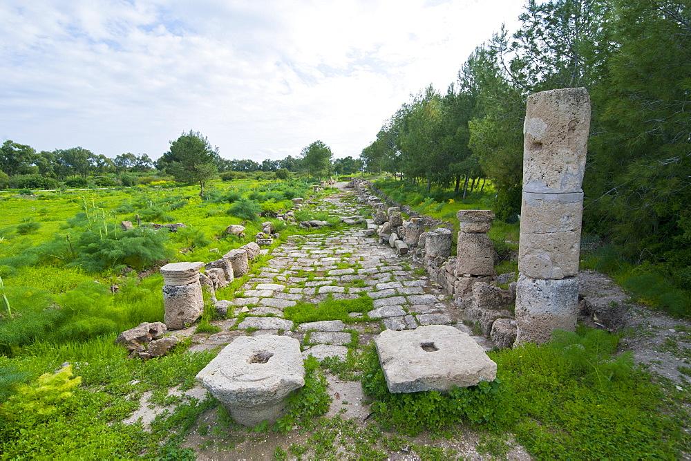 The Roman ruins of Salamis, Turkish part of Cyprus, Europe