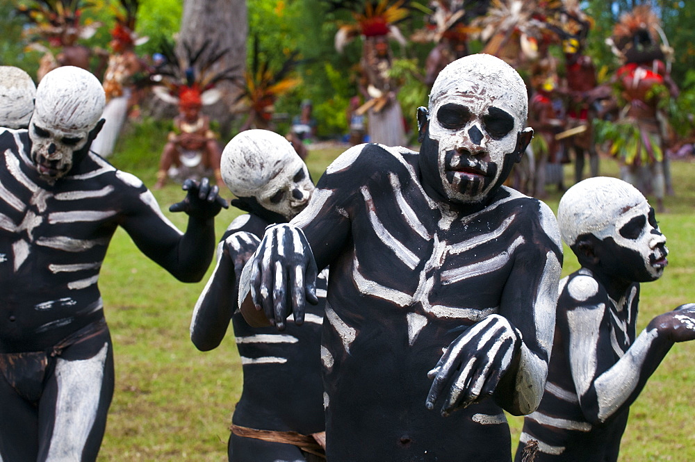 Face and body painted local tribes celebrating the traditional Sing Sing in Paya, Papua New Guinea, Melanesia, Pacific - 816-3382