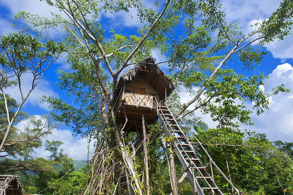 Tree house in a Banyan tree below the Volcano Yasur, Island of Tanna, Vanuatu, South Pacific, Pacific
