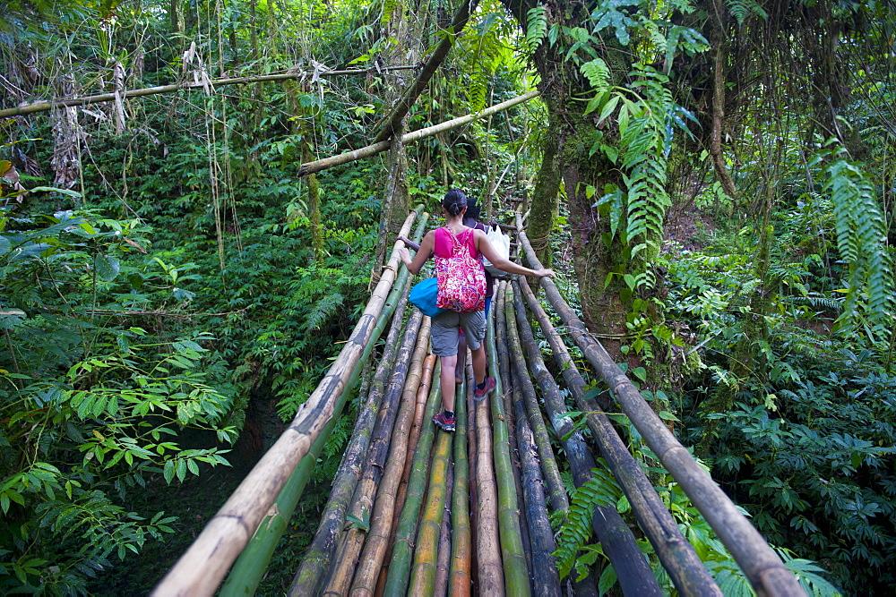Bamboo bridge in the interior leading to Millennium cave, Island of Espiritu Santo, Vanuatu, South Pacific, Pacific