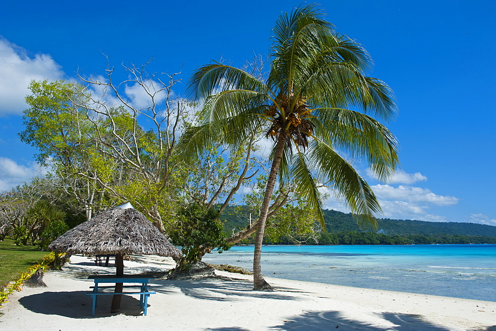 Beach hut at Champagne beach, Island of Espiritu Santo, Vanuatu, South Pacific, Pacific