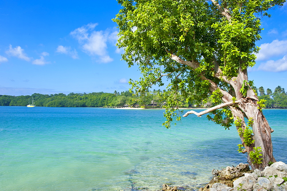 View across the bay to  Oyster island, Island of Espiritu Santo, Vanuatu, South Pacific, Pacific